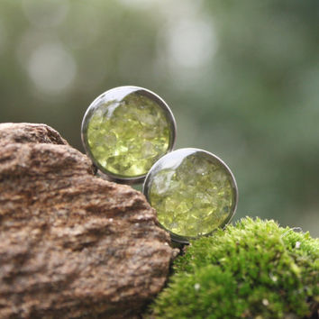Peridot Gemstone Plugs Real Peridot custom gauges size 00g, 7/16g, 1/2g, 9/16g, 5/8, 3/4g, 7/8g, 1""