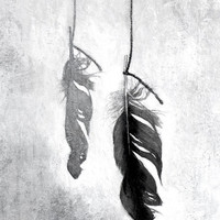 Feather black and white still life reproduction from painting