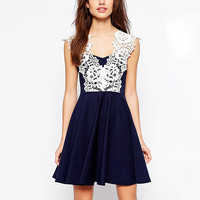 Navy Lace V-Neck Sleeveless Dress
