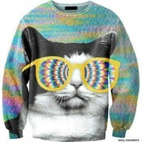 cat, cats, hipster, retro, sweater - inspiring picture on Favim.com
