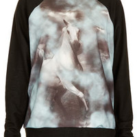 Mystic Horse Sweat - New In This Week  - New In