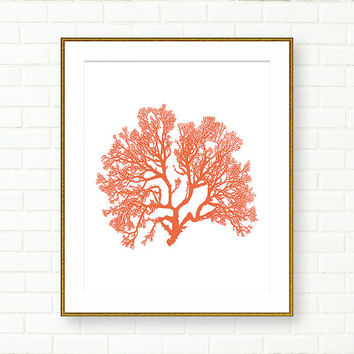 Coral Print, Beach House, INSTANT DOWNLOAD, Nautical Wall Art, PRINTABLE, Sea, Modern, Ocean, Living Room Wall Decor, Minimalist, Elegant