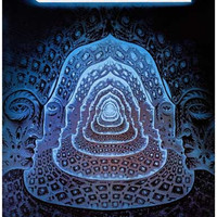 Tool 10000 Days Poster 11x17