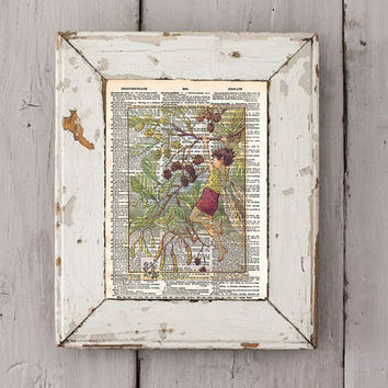 Vintage Flower Fairy art - Alder Fairy art print - Fairy children art - Dictionary print art