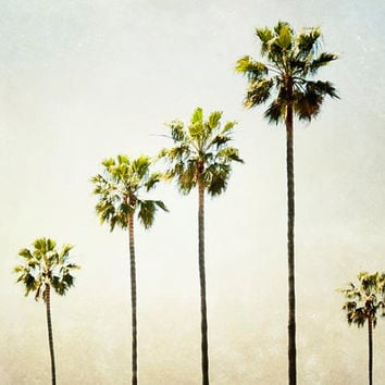 Palm Trees, California Photograph, Travel, Summer, Palm Trees, Ombre, 8x10 California Art Print