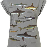 Grey Shark Print Tee By Tee And Cake - Topshop