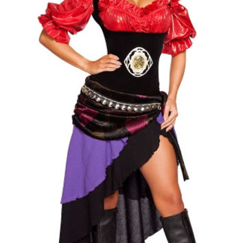 Gorgeous Gypsy Costume