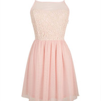 Sleeveless Illusion Lace & Tulle Dress - Blush