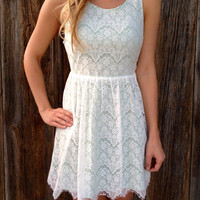 Lovely Lace Babydoll Mini Dress