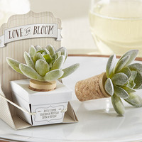 Rustic Succulent Bottle Stopper