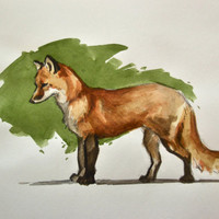 Fox Watercolor Painting 7x10 by BohemianHabits on Etsy