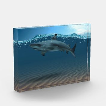 Pet Shark Photo Block
