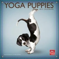 Yoga Puppies 2013 Mini 7x7