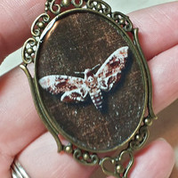 Death Head Moth Necklace - Silence of the Lambs Moth Pendant - Hawk Moth Necklace - Gothic Resin Jewelry