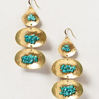 Velella Earrings