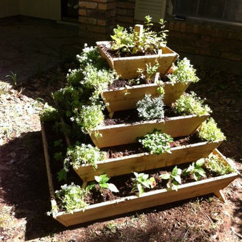 Assembled Pyramid Planter, herb garden, strawberry planter, vertical garden, raised planter, raised garden, school project, school garden,
