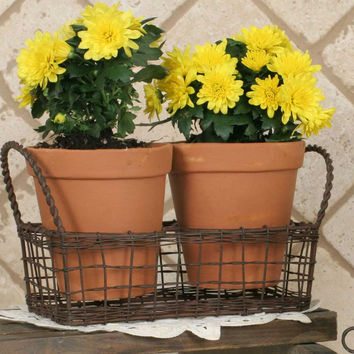 Small Wire Basket with Terra Cotta Pots - Green/Rust Finish - *FREE SHIPPING*