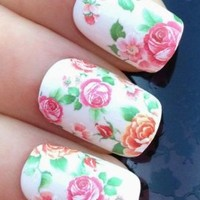 Buyinhouse Nail Art WATER DECALS STICKERS FLORAL WILD HEDGE ROW ROSES/BUDS:Amazon:Sports & Outdoors
