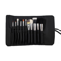 SET 682 - 11 PIECE PRO SABLE SET