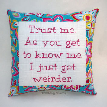 Funny Cross Stitch Pillow, Pink and Blue Pillow, Weird Quote