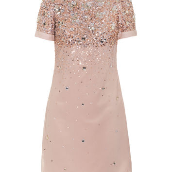 YOUNG COUTURE BY BARBARA SCHWARZER  A Princess' Dream Nude Embellished cocktail dress - Dresses