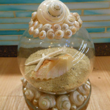 Beach Decor Seashell and Sand Globe - Coastal Snow Globe - Christmas - Snow Globe