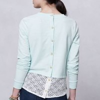 Tail-Lace Crew - Anthropologie.com