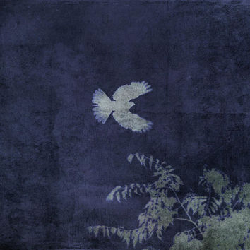 Doves Flight Indigo Art Print