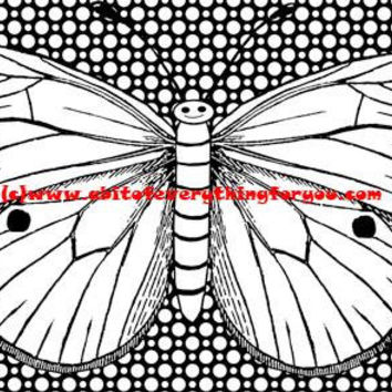 happy butterfly polka dots coloring page printable art coloring pages instant download digital image bug insect graphics coloring poster