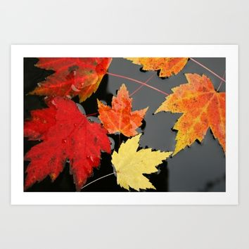 Maple leaves Art Print by Pepperberry And Sage