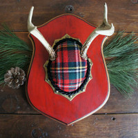 Vintage Deer Antler Mount Red Christmas Plaid Woodland Christmas Decor  Unique Taxidermy