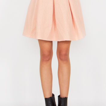 Powder Pink Skirt