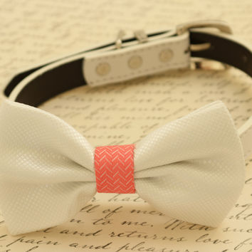 White dog Bow tie attached to collar, Coral and white wedding, Dog birthday