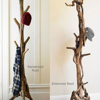 A Cool Coat Stand Made Of Real Tree Roots And Trunks | Shelterness
