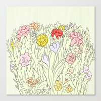 Blooms Canvas Print by anipani