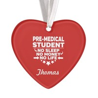 Pre-Med College Student No Life or Money Ornament