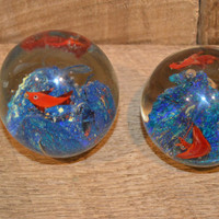 Vintage Clear Glass Fish Paperweight Set of Two Orange Fish Blue Backdrop, Fish Globe, Fish Decor, Ocean Theme, Fish Tank Paper Weight