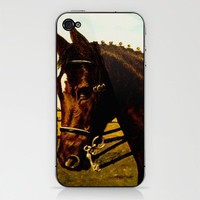 Shy look iPhone & iPod Skin by Vargamari | Society6