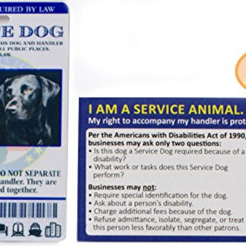 Buttonsmith Custom Personalized Service Dog ID Card - with Bonus 10 Service Dog Information Business Cards