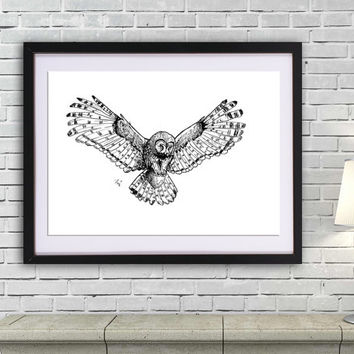 Owl drawing art PRINT, animal ink drawing, GICLEE PRINT, flying owl poster, black and white owl illustration print, hunter bird poster