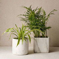 Marble Terracotta Planter - Urban Outfitters