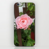 pretty pink peonies iPhone & iPod Skin by Kelli Schneider