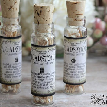 TOADSTOOL - Faerie Magick, Elf Magick, Enchantments, Fertility, Creativity, Omens, Psychic Powers, Spirits