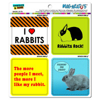 Bunny Rabbit Love MAG-NEATO'S TM Car-Refrigerator Magnet Set