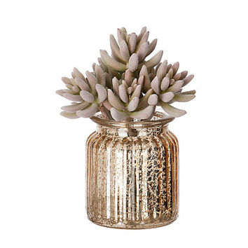 Gold Mercury Glass Succulent Arrangement