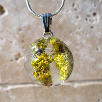 Lichen (Xanthoria parienta) Necklace, nature jewellery, Plant Jewelry, rustic, mycology, fungi