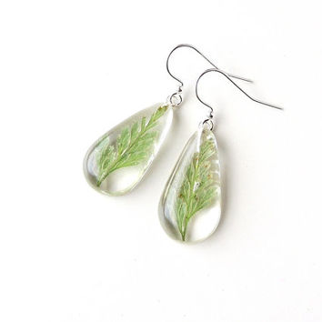 Green Leaf Earrings, Real Fern Leaves in Clear Resin Drop Earrings, Resin Jewelry Jewellery, Leaf Jewelry, Botanical, Fern Jewelry, UK (129)