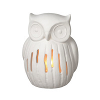 Night Owl Lamp