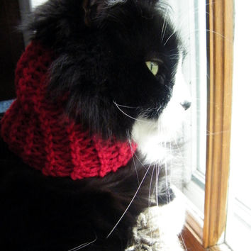 Small Dog or Cat Cowl, Hand Knit Red Cat Collar With Buttons, Small Dog knit scarf, Machine Washable Knitted Kitty Scarf /Ready to Ship