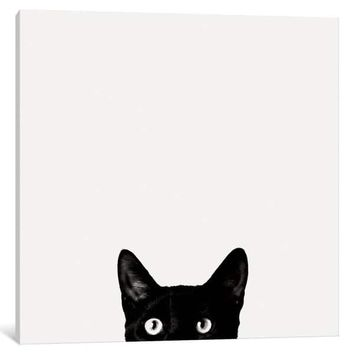 iCanvas Curiosity by Jon Bertelli Canvas Print | Overstock.com Shopping - The Best Deals on Gallery Wrapped Canvas
